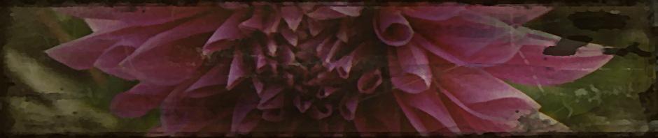 940 x 198 pixel header background